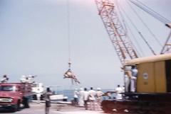 Bahrain - Circa 1960 (Knightrider) Tags: bahrain awali friends sitra camels