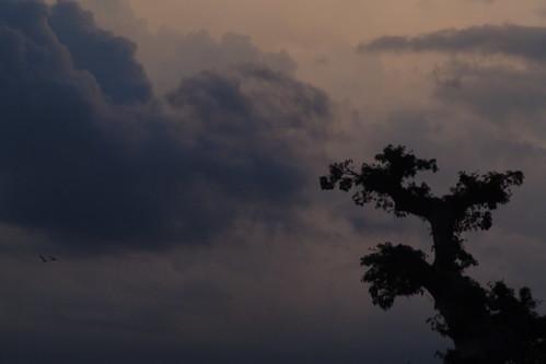 Sunset, Barentu 6