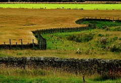 Jagged (Ray Byrne) Tags: uk england field wall rural fence wow landscape countryside bravo unitedkingdom britain country north northumberland canon350d gb jagged stonewall northern northeast zigzag drystone landscapephotography raybyrne byrneout