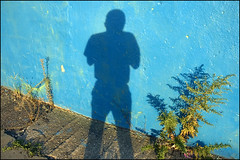 Autumn (colorstalker) Tags: newyorkcity blue autumn shadow selfportrait color nycpb wall brooklyn metaphoto streetportrait lastlight shoottheshooter