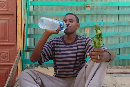 Djibouti - water and qat, what pleasure!