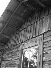 Side and Roof of Mr. Weaver's House (Old Shoe Woman) Tags: usa georgia southgeorgia dilosep05 loghouse tinroof wood logs window mrweaver dilosept05bw dilosept05
