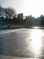 nyc_003 (madmaharaja) Tags: centralpark christo newyork gates orange gatesmemory art saffron newyorkcity nyc travel usa winter