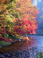Fall on the Credit River (Jeannot7) Tags: creditriver river credit fall autumn water fishing flyfishing trout personalfavorite
