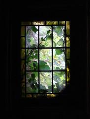 summer house window (Leo Reynolds) Tags: window canon garden eos 350d 28mm f56 glimpse iso1600 lookingout exoticgarden 0013sec 1ev hpexif leol30random xcheckratiox xleol30x