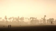 Figures on a Beach (Thomas Hawk) Tags: california park morning girls two usa beach topf25 silhouette sunrise out unitedstates 10 unitedstatesofamerica newportbeach fav20 newport hanging orangecounty fav30 fav10 fav25 natureslight superfave