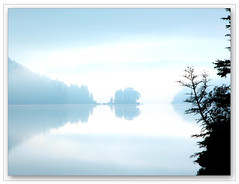 The Mist (LeFon) Tags: wood blue lake canada nature water wow amazing nikon photographer gutentag wildlife reserve 100v10fav bleu qubec arbre 4autumn brume mastigouche
