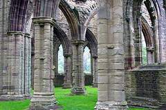 Tintern Abbey, Monmouthshire, Wales, 6 October 2005