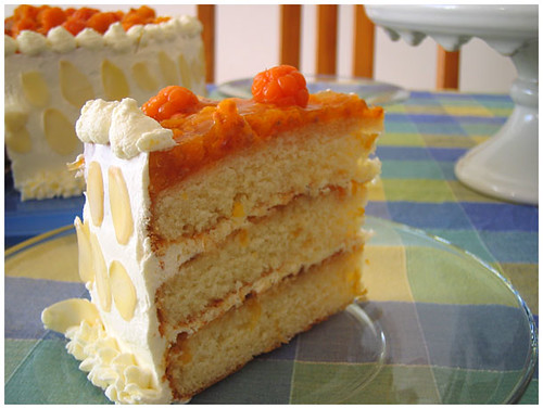Cloudberry Cream Cake by hfb.
