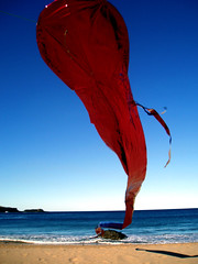 ...from the sea (macca) Tags: kite rise beach sea sky red foil tail wind horizon kiama australia