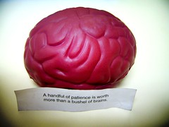Seek Patience Before Brains