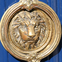 door knocker (Leo Reynolds) Tags: canon eos 350d iso100 lion squaredcircle knocker brass 120mm f63 0ev 0006sec hpexif sqrandom xratio11x sqset006 xleol30x