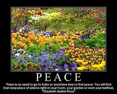 peace in the garden (EssjayNZ) Tags: 2005 flowers newzealand 15fav poster fdsflickrtoys peace quote relaxation essjaynz motivational taken2005 sarahmacmillan