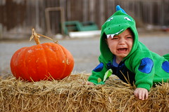 scary monster (jen clix) Tags: halloween nephew dinosaur icalledhima seamonster pumpkin haystack crying 1sttriptocalifornia 1sthalloween tc18costumes