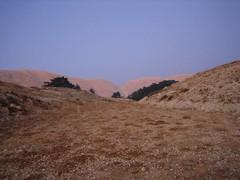 IMG_0190 (gabe3651) Tags: lebanon cedars becharre