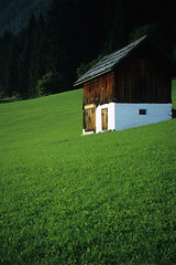 Barn (Walter Quirtmair) Tags: 2005 brown green film barn austria meadow carinthia september swq takenbywalter weissensee eos300