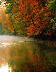 morning colors (jimall) Tags: morning autumn trees red sky copyright mist reflection fall water yellow sunrise gold yahoo interestingness google stream flickr pennsylvania explorer tranquility 100v10f pa exploreinterestingness copyrighted jimallebach jimall allebach wwwflickrcomphotosjimbachsets jamesallebach