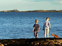 Time to stand and stare (Ray Byrne) Tags: sea dog castle coast northumberland beadnell dunstanburghcastle raybyrne byrneout byrneoutcouk webnorthcouk