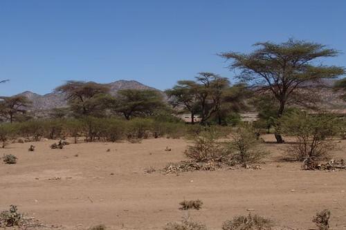 Borama countryside