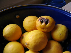 oldlemon (e2reneta) Tags: lemon food cutelittleface taggedout