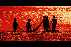 Teamwork (!!sahrizvi!!) Tags: ocean pakistan sunset red sea sun sunlight beach nature boys water beautiful silhouette kids landscape fishing nikon colorful outdoor dusk silhouettes monotone menatwork shore backlit karachi catchycolor hummingbirdxmas teamwork fishingnet seawater nikon6006 rizvi sahrizvi sarizvi topphoto bronly nikonstunninggallery topphotoolddeleted alemdagqualityonlyclub
