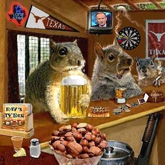 The Bar Part II (Terry_Lea) Tags: squirrel squirrels tbas