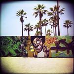 holga. venice graffiti pit. 2002.