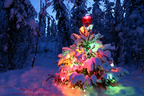 Image%20result%20for%20beautiful%20christmas%20pictures