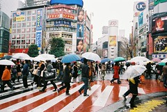 Shibuya (swamp) Tags: japan umbrella rain people street shibuya crosswalk tokyo station 109