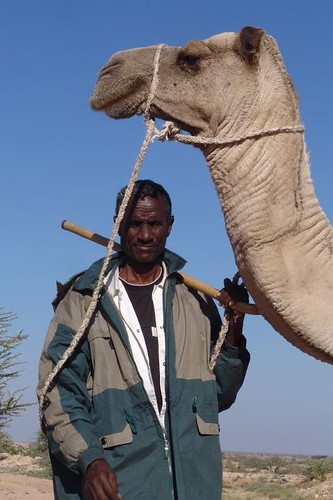 Nomad with camel on way to Berbera