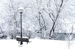I walked threw my closet, but being only a closet and not a wardrobe I ended up on the outskirts of Narnia... (Cate Partridge Photography) Tags: winter white snow cold ice lamp january lamppost narnia snowing snowfall icky spareoom narniasuburb lindablog37