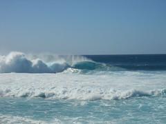 Banzai Pipeline 20 (buckofive) Tags: hawaii oahu northshore banzaipipeline ehukaibeachpark surfing bigwavesurfing surfer beach waves surf