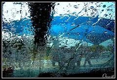 Vitalidad. (Orcoo) Tags: auto color luz water colors mexico agua colores carwash nuevoleon monterrey picnik 151 oswaldo ordoez orcoo