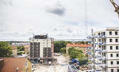Elineberg - juni 2015