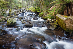 Barrington Tops (laurie.g.w) Tags: park fern fall water creek forest river highlands rocks stream australia national nsw cascade tops waterway barrington waterscape paddys