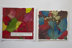 art (Shootfilms skate) Tags: chile life blue santiago shadow red naturaleza 3 black verde art colors lucky edgar