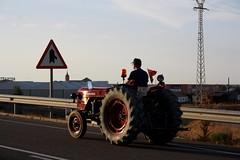 IMG_0407 (ACATCT) Tags: old españa tractor spain traktor agosto toledo antiguo massey pistacho tembleque barreiros 2015 bustards perdices liebres avutardas ff30ds r350s