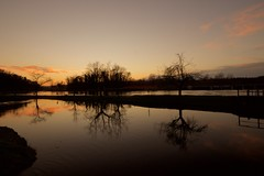 _DSC6241 (parolinfederico) Tags: sunset a58 alberi diga parcodelticino panperduto sigma sigma1020 sony sonya58 sommalombardo ticino canale
