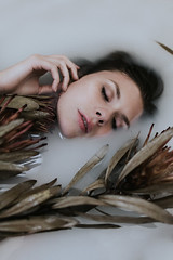 Milkweeds (Corinne Alexandra) Tags: milkbath protea creepy moody haunting ethereal