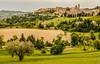 Italy - Urbino (Henk Verheyen) Tags: italië urbino landschap marche it italy landscape cityscape stadsgezicht gras boom tree stad city