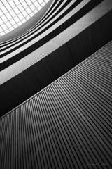 Linientreu (mimo b. rokket) Tags: abstrakt abstract abstraktearchitektur abstraktarchitecture linien lines schwung kurve bw blackandwhite blacknwhite schwarzweis monochrom monochrome sw licht light schatten shadow geometrie geometry wideangle weitwinkel santiagocalatrava zürich schweiz siwtzerland
