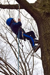 Boy in blue jacket 3 (Montgomery Parks, MNCPPC) Tags: treeclimbing woodsidepark january2017 2017