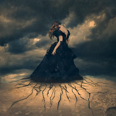 widening cracks (brookeshaden) Tags:
