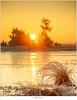 Icy winter sunrise (nandOOnline) Tags: snow heide natuur ripe landscape strabrecht nature thaw rijp ven wit strabrechtseheide zonsopkomst sunrise ice winter dauw landschap scheidingsven ijs