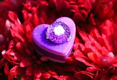Purple Heart - Macro Mondays, heart (۞Thalib۞) Tags: macromondays heart flower raindrops macro canon7dmii canon100mmf28lis thalib
