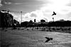 spi_058 (la_imagen) Tags: türkei turkey türkiye turquía istanbul istanbullovers taksim taksimmeydanı taksimplatz taksimsquare sokak sw bw blackandwhite siyahbeyaz  monochrome strasenfotografieistkeinverbrechen street streetandsituation streetlife streetphotography menschen people insan taube pigeon licht light işik gölge shadow schatten
