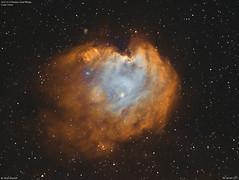 NGC2174_Hubble_2017-1-4 (MarkLB57) Tags: astronomy astrophotography marklb57 ngc2174 meade6000115mmrefractor azeq6gt zwoasi1600mmcool zwoefwelictricfilterwheel nebula hubblepalette ha oiii orion monkeyhead