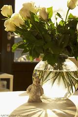 Winter (Natali Antonovich) Tags: winter belgium belgique belgie roses decor decoration vase shadows atmosphere light sculpture parallels stilllife vigorousitems christmas lifestyle clown