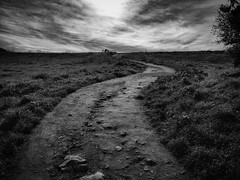 Path to the Clouds (Jay758) Tags: springlake california jay758 northerncalifornia sonomacounty blackandwhite grass landscape monochrome park santarosa sky trail