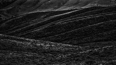 West of Laramie (jessicalowell20) Tags: unitedstates west wyoming prairie mountaints room breathe black white open space summer evening lines light dark